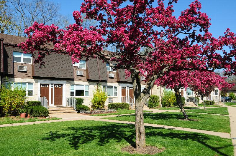 Woodbridge Village exterior photo shows a brick apartment building with brown front doors and white trim. Green bushes line the front of the building and flowering pink and red trees are in the foreground.